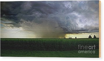 Calm Before The Storm Wood Print by Sue Stefanowicz