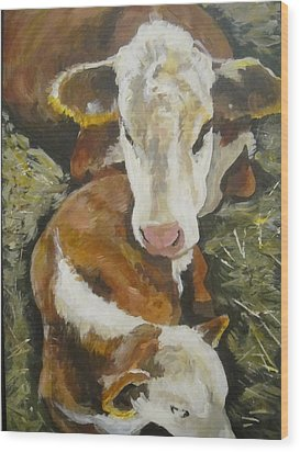 Calm Calf Wood Print