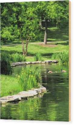 Wood Print featuring the painting Calm Lake Ellyn by Christopher Arndt
