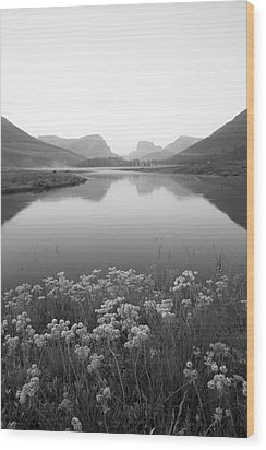 Calm Morning  Wood Print by Dustin LeFevre