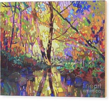 Calm Reflection Wood Print