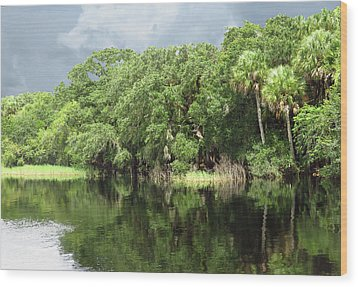 Calm River Reflections Wood Print by Rosalie Scanlon
