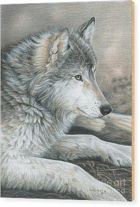 Calm Wolf Wood Print