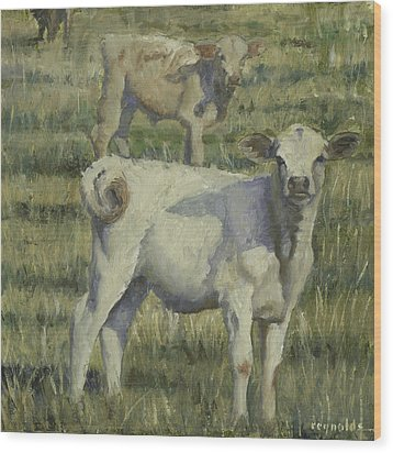 Calves In The Pasture Wood Print by John Reynolds