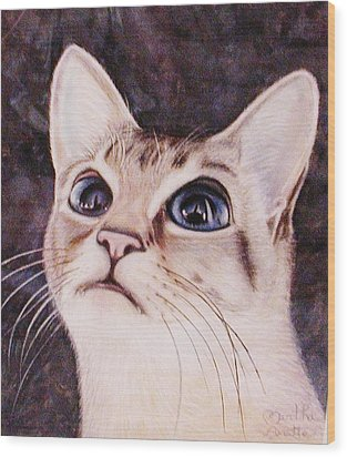 Calvin The Cat Wood Print by Martha Ayotte