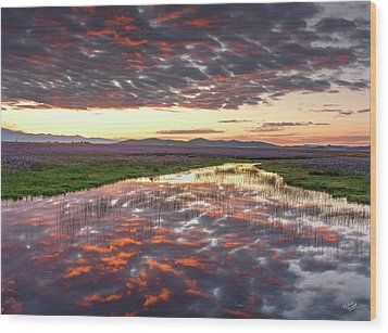 Wood Print featuring the photograph Camas Spring Sunrise by Leland D Howard