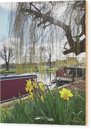 Wood Print featuring the photograph Cambridge Riverbank In Spring by Gill Billington
