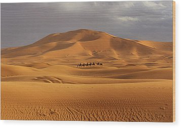 Wood Print featuring the photograph Camel Trek by Ramona Johnston