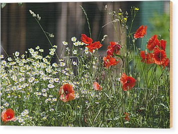 Camille And Poppies Wood Print