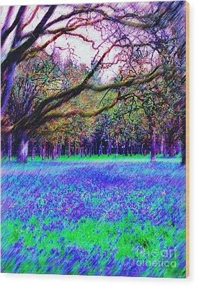 Camus Wood Print by Diane E Berry