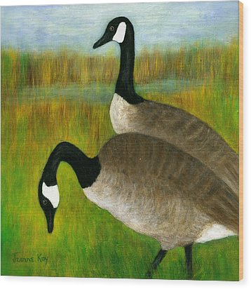 Canada Geese Grazing  Wood Print