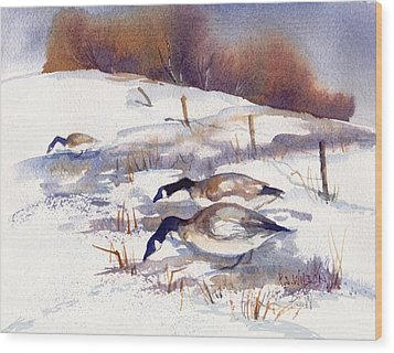 Canada Geese In Stubble Field II Wood Print by Peggy Wilson