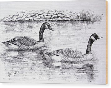 Canada Geese Wood Print by Terence John Cleary