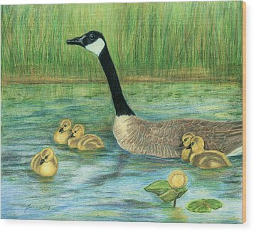 Wood Print featuring the painting Canada Goose And Goslings by Jeanne Kay Juhos