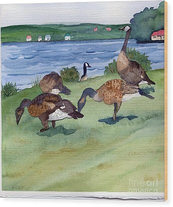 Canadian Geese S  2 Wood Print by Gloria Couture