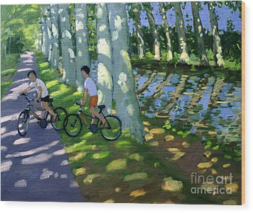 Canal Du Midi France Wood Print by Andrew Macara