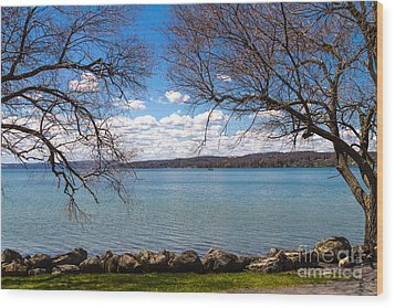 Canandaigua Wood Print by William Norton
