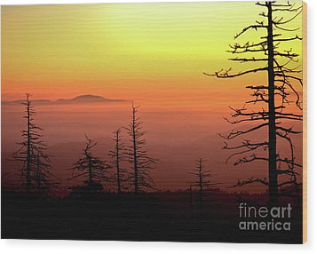 Wood Print featuring the photograph Candy Corn Sunrise by Douglas Stucky