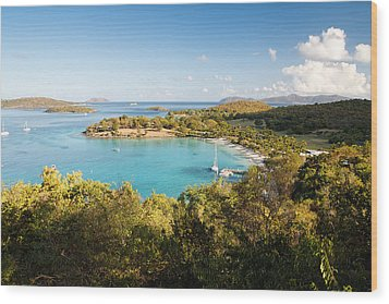 Caneel Bay Panorama Wood Print by George Oze