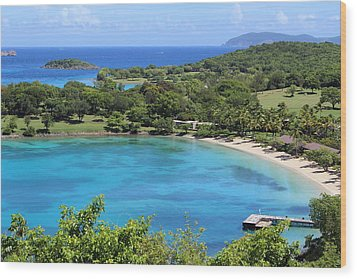 Caneel Bay St. John Wood Print by Fiona Kennard