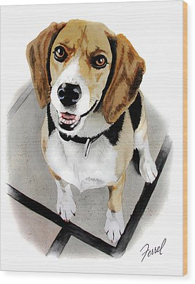 Canine Cutie Wood Print by Ferrel Cordle