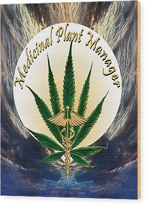 Cannabis Medicinal Plant Wood Print by Michele Avanti