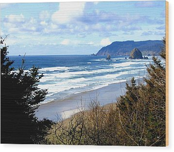 Cannon Beach Vista Wood Print by Will Borden