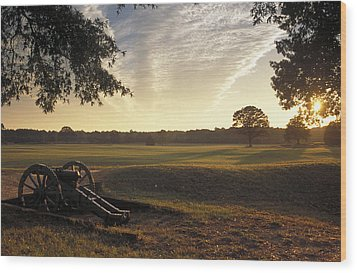 Cannons On The Battlefield Wood Print by Richard Nowitz