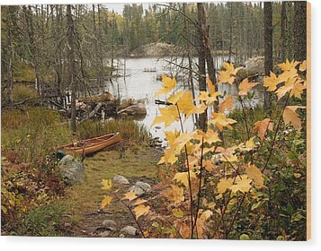 Canoe At Little Bass Lake Wood Print by Larry Ricker