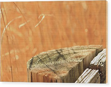 Cantigny Fence Post Wood Print