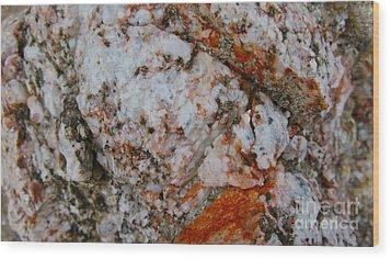 Canyon Blend Wood Print by PJ  Cloud