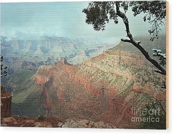 Canyon Captivation Wood Print