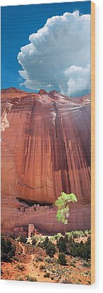 Canyon De Chelley Wood Print by Ric Soulen