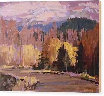 Canyon Drive Wood Print by Brian Simons