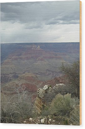 Wood Print featuring the photograph Canyon Edge by Gordon Beck