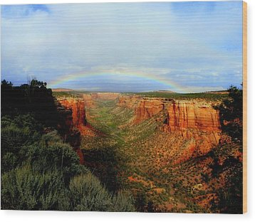 Canyon Rainbow Wood Print by Ellen  Leigh