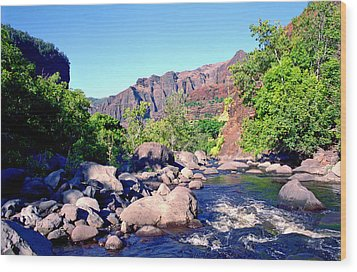 Canyon River  Wood Print by Kevin Smith