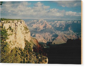 Wood Print featuring the photograph Canyon Shadows by Fred Wilson