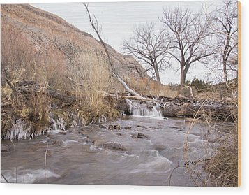 Canyon Stream Current Wood Print