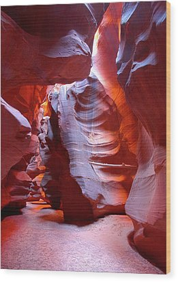 Wood Print featuring the photograph Canyon View  by Harold Rau
