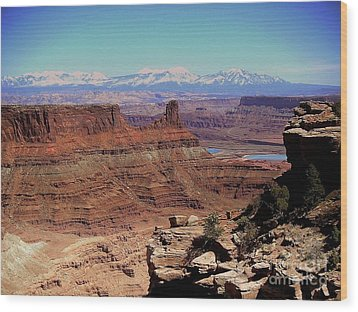 Canyonlands 5 Wood Print by Marty Koch