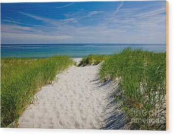 Cape Cod Bay Wood Print by Susan Cole Kelly