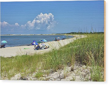 Wood Print featuring the photograph Cape Henlopen State Park - Beach Time by Brendan Reals
