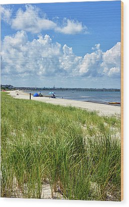 Wood Print featuring the photograph Cape Henlopen State Park by Brendan Reals