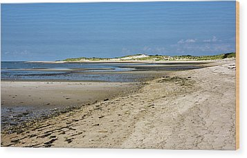 Wood Print featuring the photograph Cape Henlopen State Park - Delaware by Brendan Reals