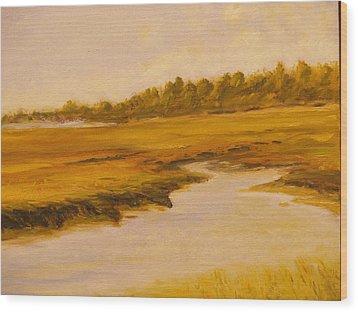 Cape Marsh Wood Print by Paul Galante