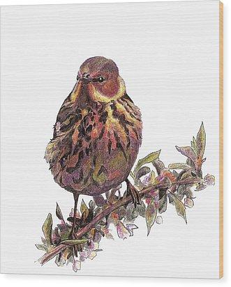 Cape May Warbler Wood Print