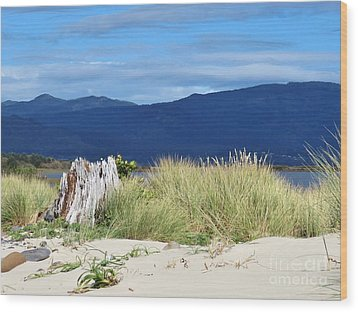 Sand Grass Mountains Sky Wood Print