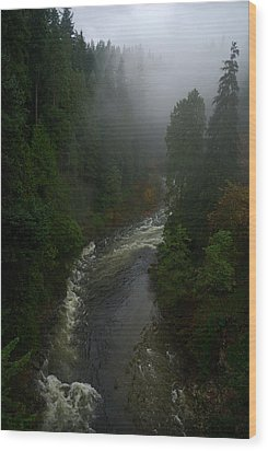 Wood Print featuring the photograph Capilano Canyon by Steven Richman