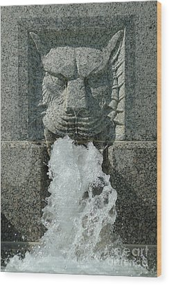 Senate Fountain Lion Wood Print